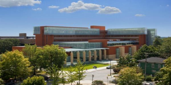 State University of New York - Albany
