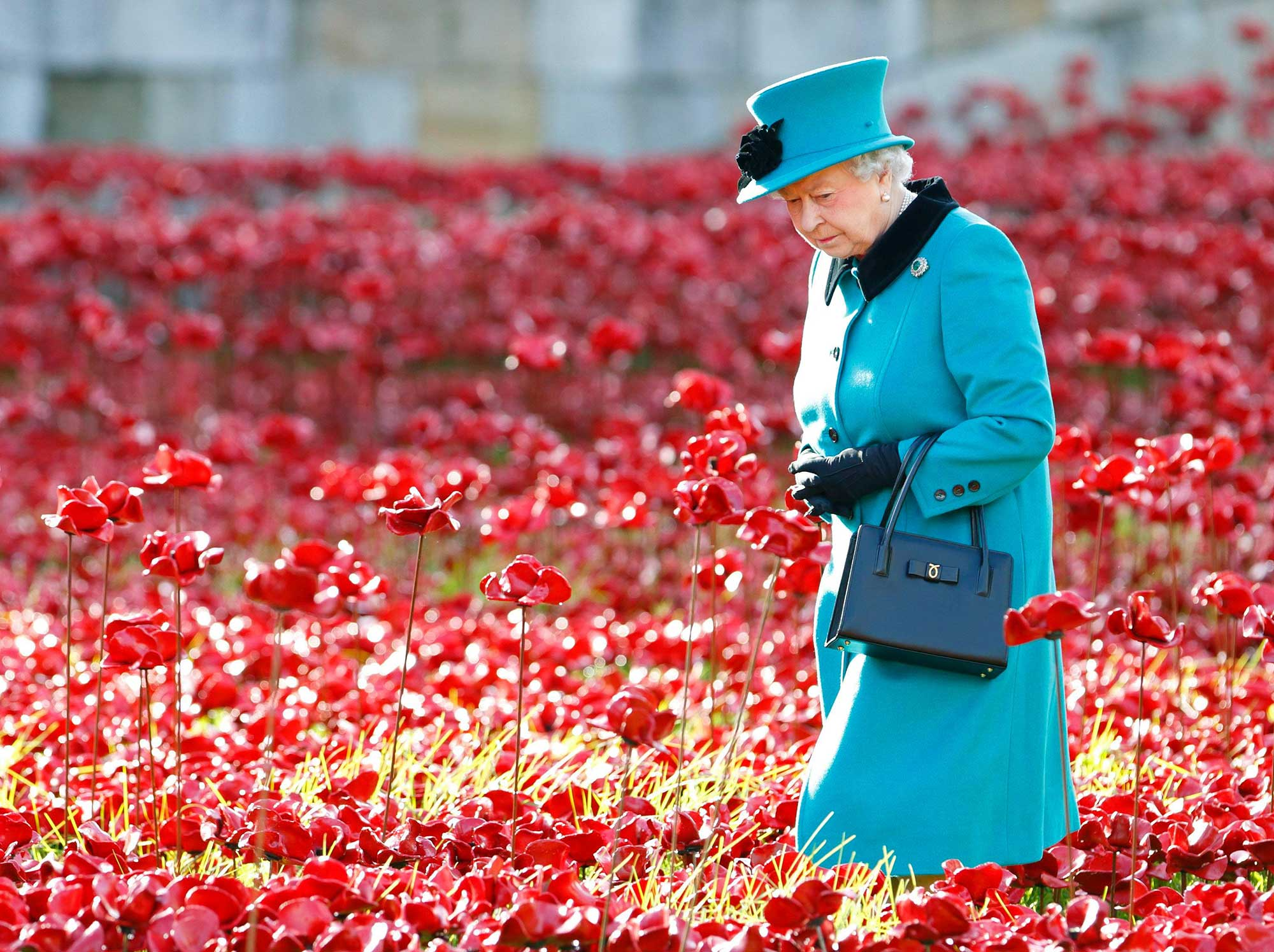 【英國節慶】國殤紀念日,致那些英勇的戰士們!