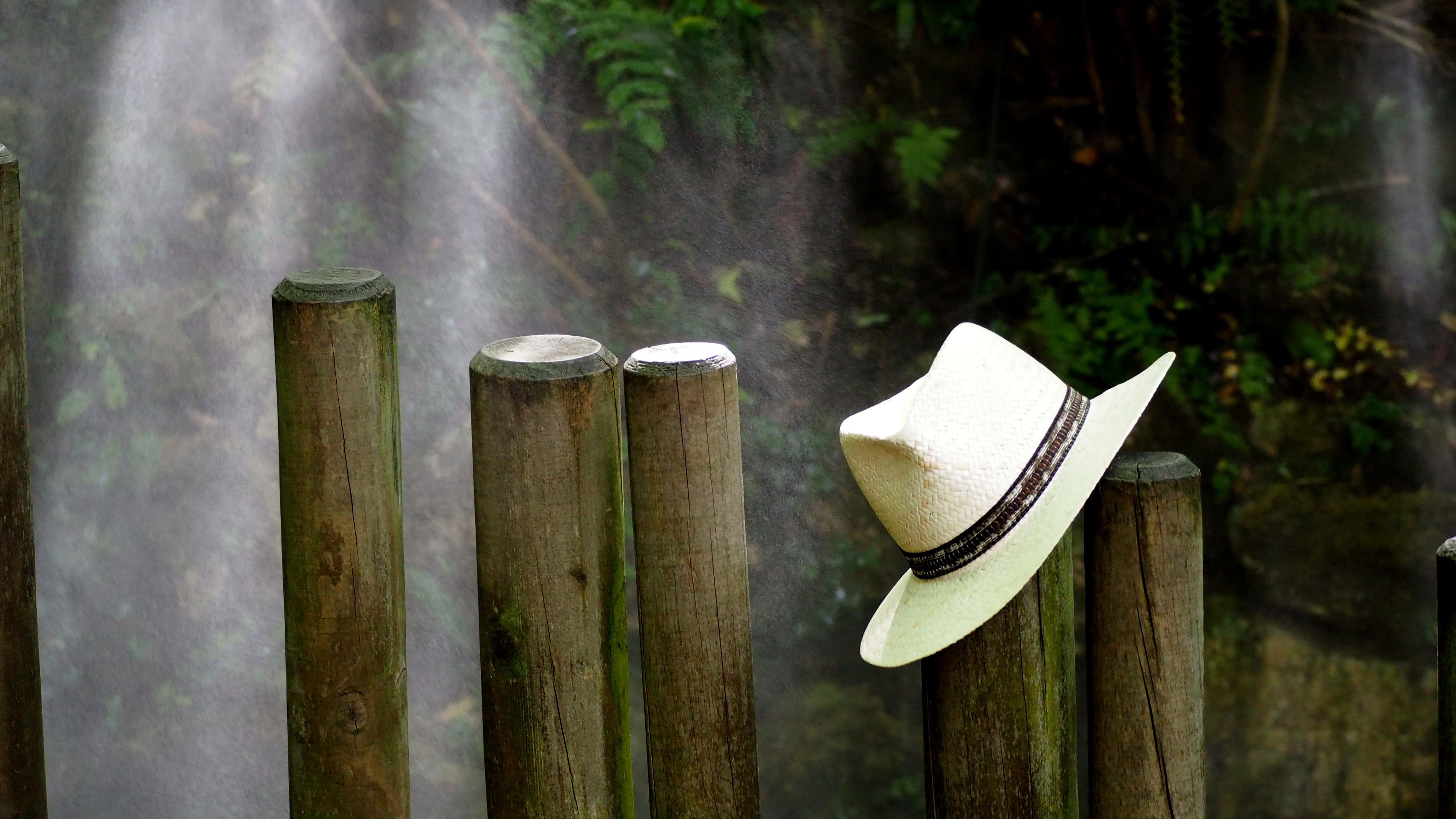 英國皇室總愛以「帽」取人?揭秘帽子的神奇力量!